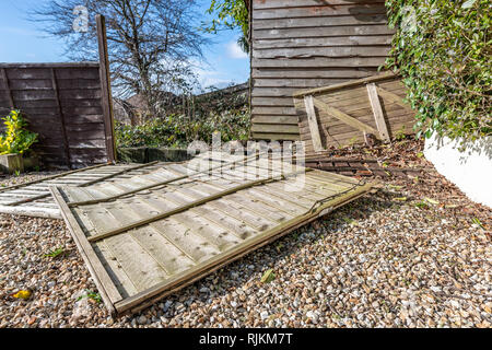 Poole, UK. 7th February 2019. Fence panels come down in the very windy weather in Dorset. Credit: Thomas Faull/Alamy Live News - Stock Image