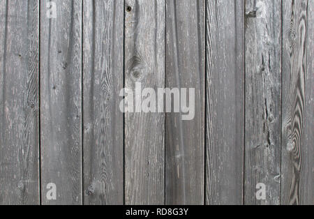 Weathered vertical narrow grey fence boards. - Stock Image