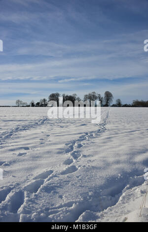 Following a heavy snowfall this footpath near the north Oxfordshire village of Hook Norton lies under approx 6 inches/15cm - Stock Image