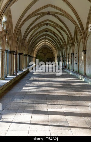 Salisbury Cathedral cloisters - Stock Image