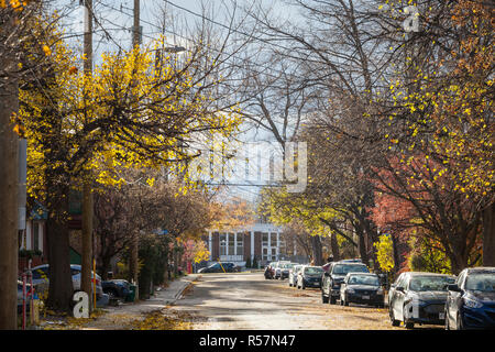 OTTAWA, CANADA - NOVEMBER 10, 2018: Typical north American residential street in autumn in Centretown, Ottawa, Ontario, during an autumn afternoon, wi - Stock Image