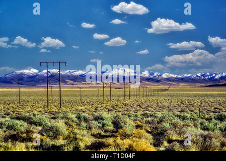 Miles of power lines with Trout Creek Mountains, near Fields Oregon. - Stock Image