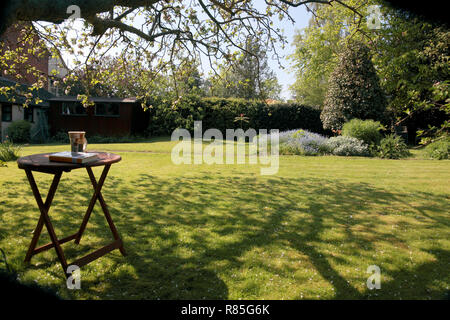 A garden on a summer's day - Stock Image