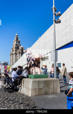 Outside the museum of Liverpool, near Liverpool's Pier Head stands one of a series of mini super lambbanana sculptures. - Stock Image