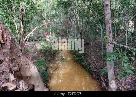 View of Hartley's Crocodile Adventures wildlife sanctuary, Captain Cook Highway, Wangetti, Queensland, Australia. - Stock Image