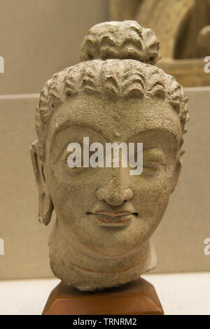 Buddha Head(Stucco). 3rd-4th Century. Taxila, Pakistan. Department of Archaeology and Museums - Stock Image