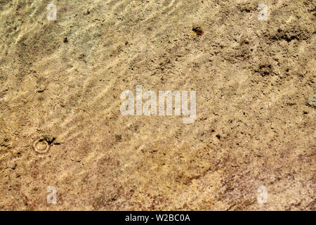 Close up of clean natural water showing sand and soil texture across - Stock Image