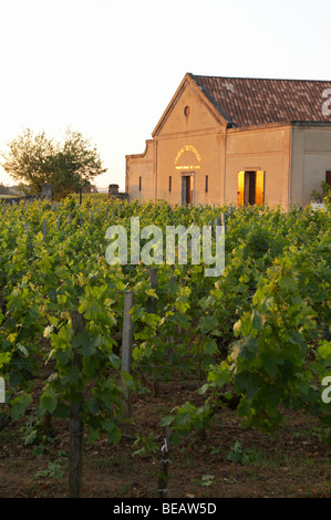 the winery at sunset chateau trottevieille saint emilion bordeaux france - Stock Image