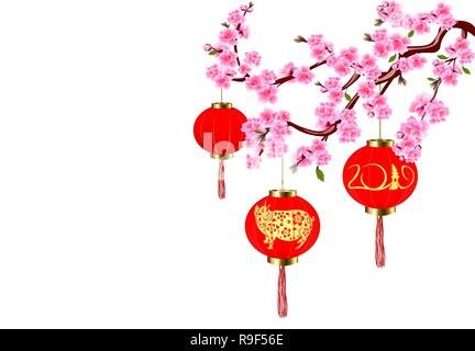 Chinese New Year. Sakura and red lanterns with pictures of a pig. Cherry flowers with buds and leaves on the branch. illustration - Stock Image