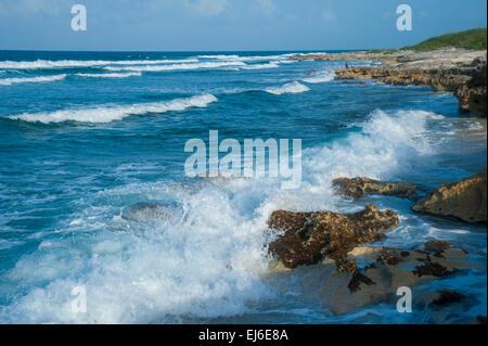 Isla Mujeres Shoreline - Stock Image