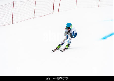 A disabled competitor, with both lower arms amputated, racing downhill in a giant slalom race - Stock Image