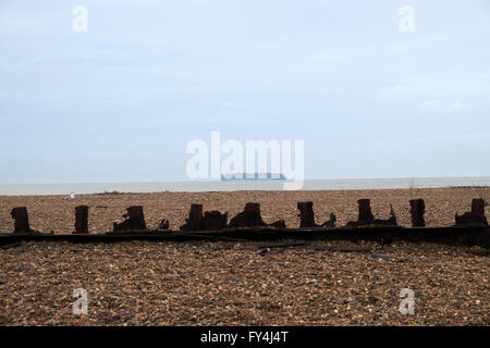 Maersk container ship entering the channel for the Port of Felixstowe, Bawdsey Ferry, Suffolk, UK. - Stock Image