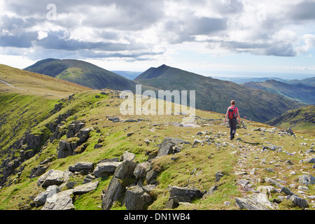 A hiker walking off Great Carrs towards the Old Man of Coniston and Dow Crag in the Lake District. - Stock Image