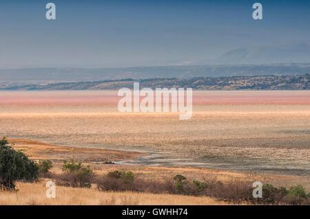 Landscape of dry soda mineral lake. Magadi, Kenya. Africa. - Stock Image