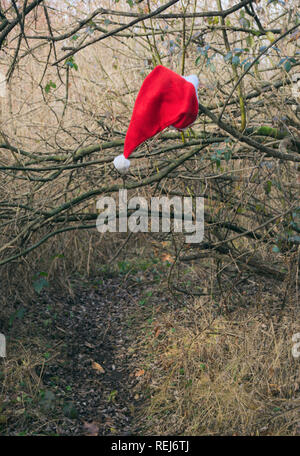 Santa Claus hat hanging on a branch - Stock Image