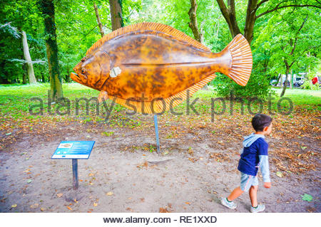 Kolobrzeg, Poland - August 10, 2018: Young boy walking in front of a model european plaice fish at a park - Stock Image