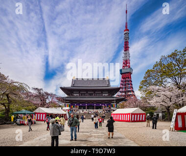5 April 2019: Tokyo, Japan - Visitors at Zozoji Buddhist Temple in cherry blossom season, with the Tokyo Tower. - Stock Image