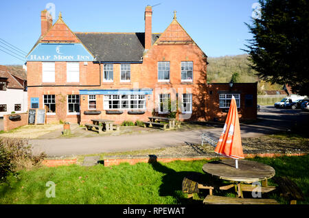 The Half Moon Inn pub Stoke St Mary, Taunton, Somerset UK - Stock Image