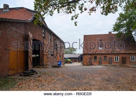 Farm buildings in the village of Lintig, Geestland, in Landkreis Cuxhaven, northern Germany - Stock Image