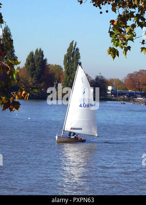 Sailing yacht on the River Thames at Putney on a sunny Sunday in October - Stock Image