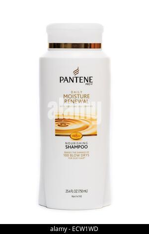Pantene Daily Moisture Renewal Shampoo - Stock Image