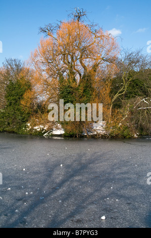 UK.Lake covered in snow and ice in Victoria Park, London Photo Julio Etchart - Stock Image