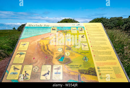 Map board with bird information, Aberlady Nature Reserve, East Lothian, Scotland, UK - Stock Image