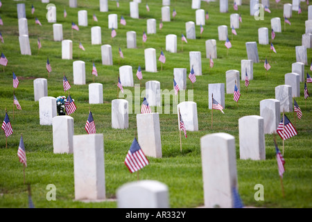 veterans cemetery on Veterans day with american flags on the graves - Stock Image