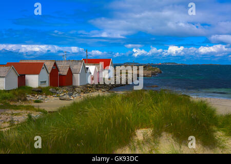 Norwegian beach on a sunny day - Stock Image