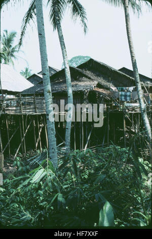 Long houses in the jungle, built on stilts; Kuching area, Sarawak, NW Borneo, Malaysia.  By building on stilts people - Stock Image