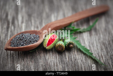 Poppy flower seeds and leaves on wooden surface - Stock Image
