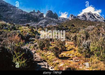 Mount Kinabalu National Park, Sabah, East Malaysia. Summit trail, view of summit in background, trail steps in foreground - Stock Image