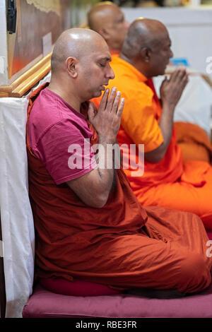 Buddhist monks with hands clasped and in colorful robes pray and meditate at a temple in Queens Village, New York City. - Stock Image