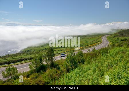 Haar sea fret cold fog static cloud on A9 road 2 miles N. of Helmsdale, Sutherland, Scotland. Typical when warm - Stock Image