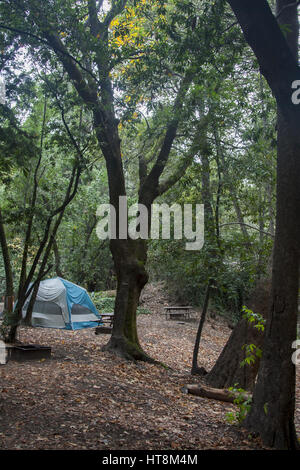 Tent camping at Fernwoeed on Highway 1 in Big Sur, California. - Stock Image