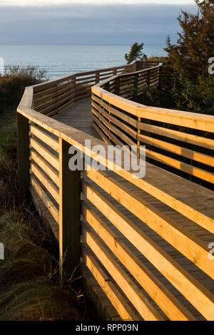 Boardwalk at Ecola State Park, Cannon, Beach, Oregon - Stock Image
