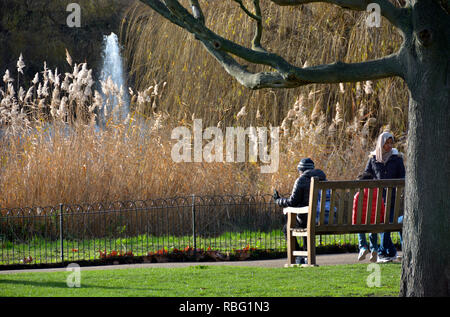St James's Park in winter, London, England, UK. - Stock Image