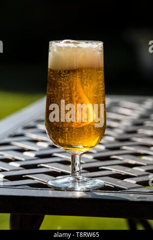 A stem glass of lager on a garden table with the sun shining through and a frothy top. - Stock Image