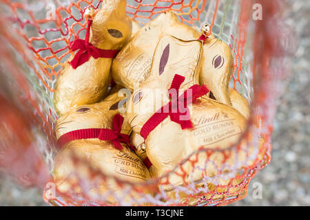 Lindt gold bunnies in shopping bag - Stock Image