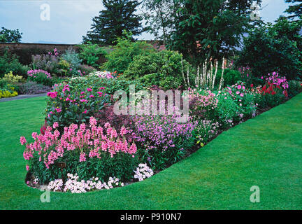 A large Pink flower border in a country garden - Stock Image