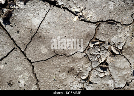 Cracked and broken dry mud dried from hot sun with textures of a flaking peeling riverbed - Stock Image