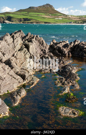 A distant view of Whitesands bay in Pembrokeshire from Porthselau beach with rocky coastline in the foreground. - Stock Image