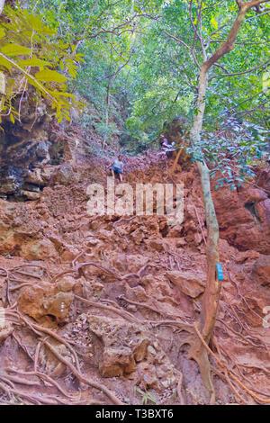 People climbing down from Sa Phra Nang, Railay, Krabi province, Thailand - Stock Image