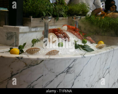 Two lobsters on a pile ice with shells and whole lemons - Stock Image