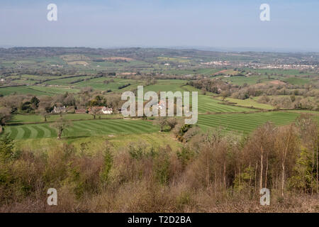 View across the Otter Valley from White Cross, where East Devon Way meets East Hill Strips, Ottery St Mary on the right - Stock Image