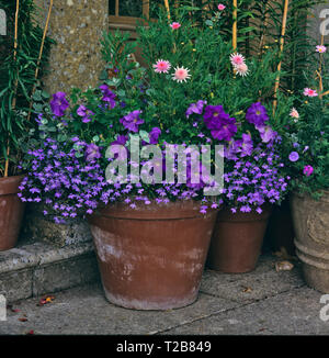 A stone terrace with colouful planted containers of flowers - Stock Image