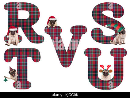 cute Christmas pug puppy dog alphabet letters R S T U V, isolated on white background - Stock Image
