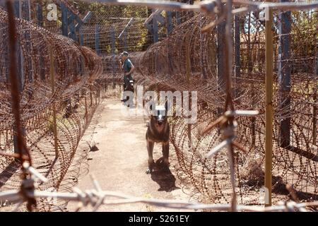 Model guard men and guard dogs through barbed wire at Phu Quoc prison, Phu Quoc, Vietnam - Stock Image