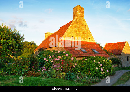 Traditional house in stone with flowers in Brittany, France - Stock Image