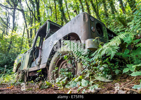 Abandoned Land Rover car overgrown with plants and weeds on a forest track - Stock Image